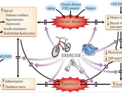 El precio de no hacer ejercicio
